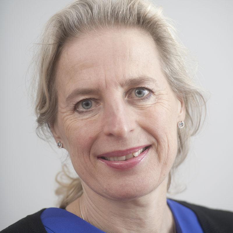 Aangesloten advocaten Advocabo | mr. Liesbeth Diesfeldt | Diesfeldt Advocaten